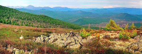 Алтайский заповедник Общее Алтайский биосферный заповедник Алтайский заповедник расположен в центре Алтае Саянской горной страны Обширная территория с горами хвойными лесами альпийскими лугами и горными тундрами